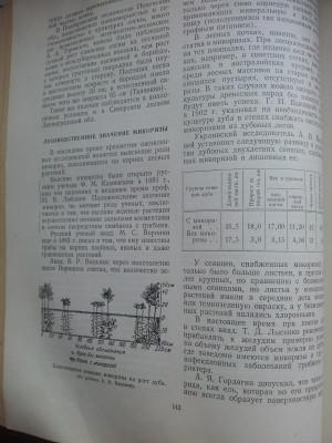 микориза ткаченко