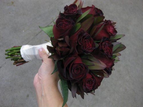 """роза """"Чёрный принц"""""""