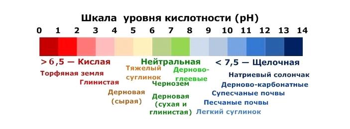 шкала уровня кислотности ph